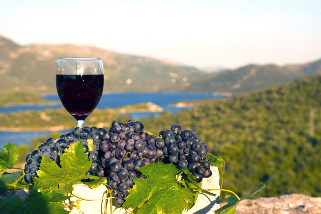 Korčula Island sightseeing with wine tasting